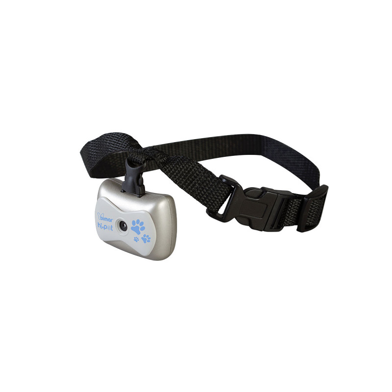 Digital video and audio camera, with collar, to...